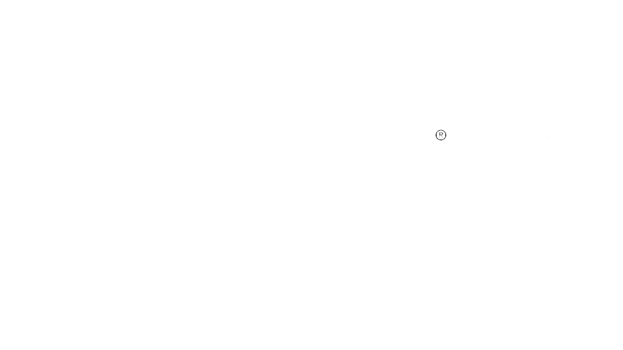 Timberland LYON  LOGO